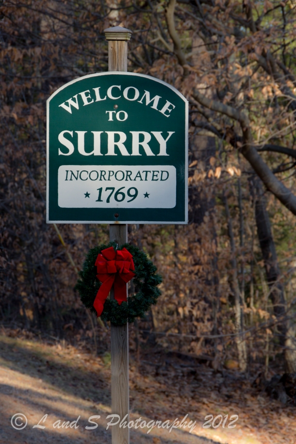 Surry-3