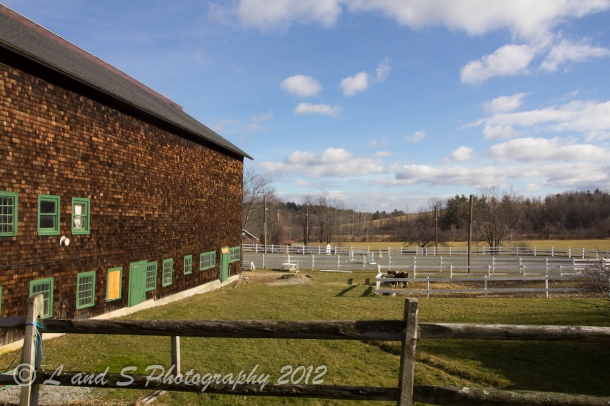 Touchstone Farm-0272