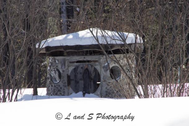 Feb10 Windsor-2906