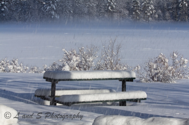 Might have to wait for spring to use the picnic table