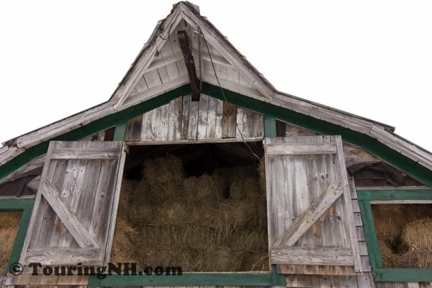 Mar7 Earth Haven Farm-4817