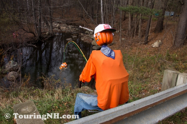 Or was he looking at Martha? I guess he really is just a two faced fisherman. Great job catching Nemo!