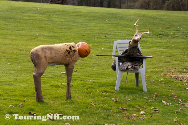 I'm still laughing about this one. Love the expression on the deer head!
