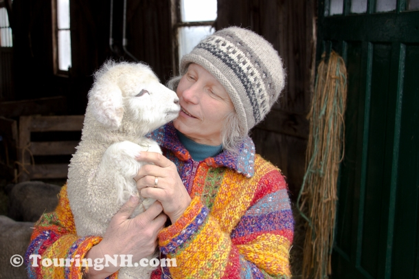 Marlborough - One of the great people I met this year. Mary and her lamb.