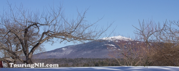 Troy - A magnificent view of Mt Monadnock from Monadnock Berries. Unfortunately, I never did get a chance to go back and pick berries, maybe next year.