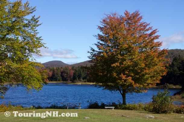 Washington - Pillsbury State Park in the fall.