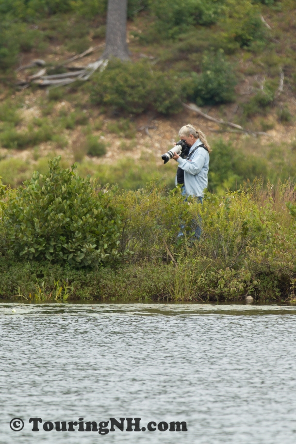 Steve wasn't just photographing the loon...I know, there is a joke in there somewhere