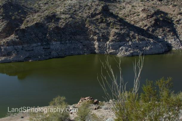 Alamo Lake State Park-134
