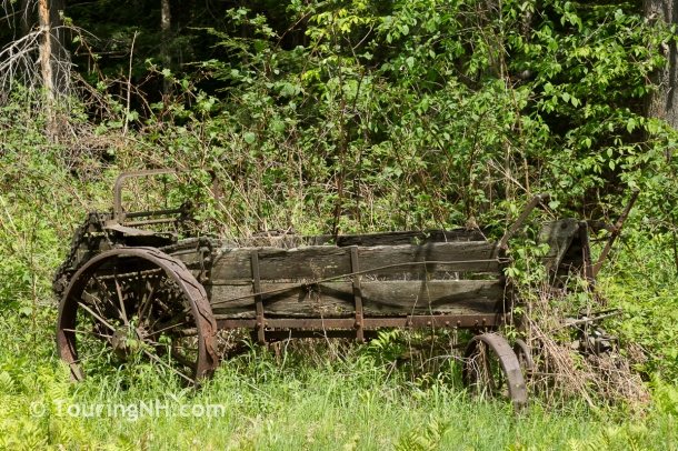 OK, so I can't pass up old farm equipment either!