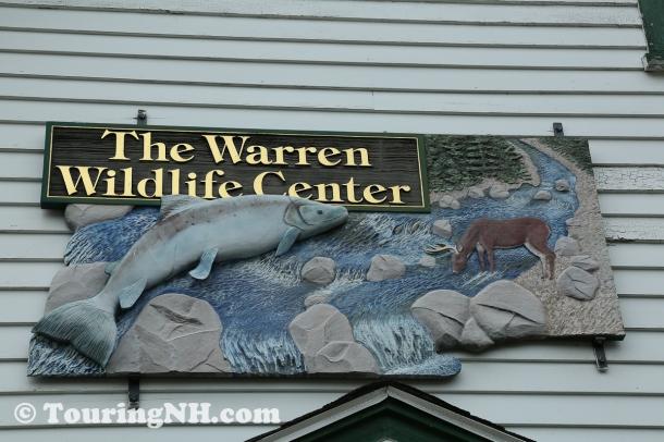 Warren-3036