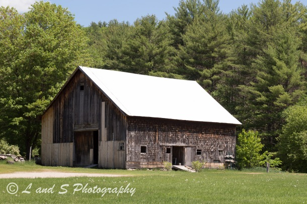 An old barn with grass in front and a forest behind it. Photographed in Wentworth, New Hampshire in the spring. Landscape orientation.