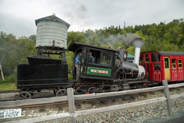 Cog Railroad Mount Washington-7543