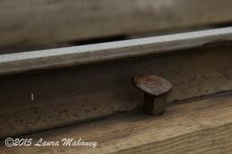 Cog Railroad Mount Washington-7688