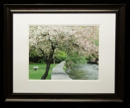 Framed and Matted-8903
