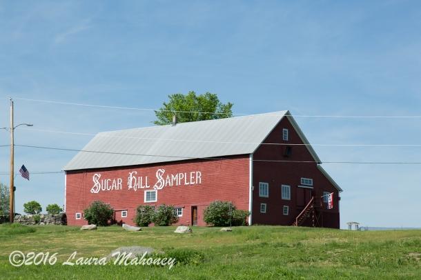 Sugar Hill-0220