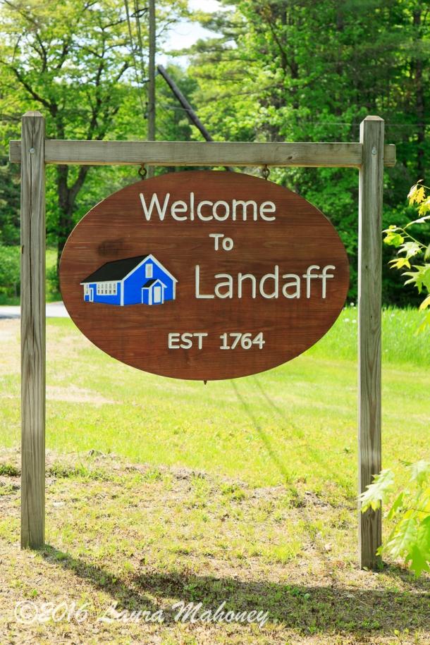 Landaff-0230-2